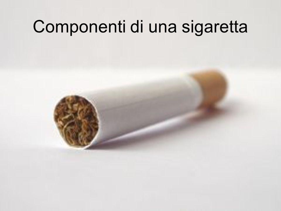 Componenti di una sigaretta