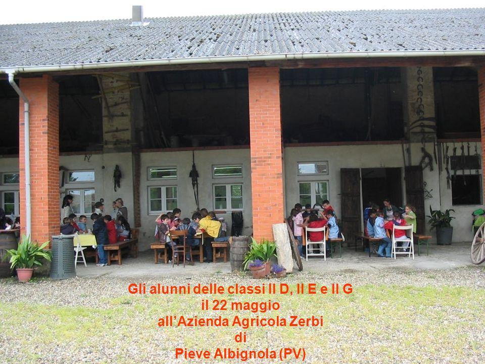 Gli alunni delle classi II D, II E e II G il 22 maggio allAzienda Agricola Zerbi di Pieve Albignola (PV)