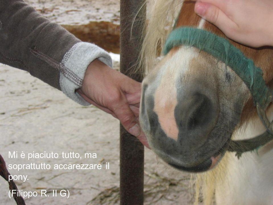 Mi è piaciuto tutto, ma soprattutto accarezzare il pony. (Filippo R. II G)