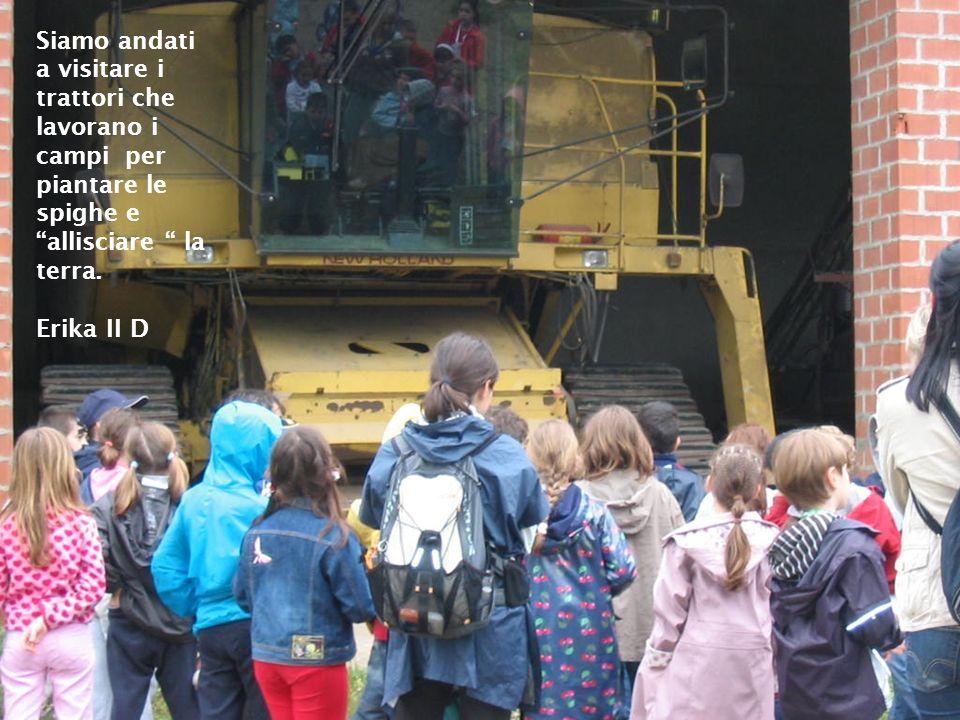 Siamo andati a visitare i trattori che lavorano i campi per piantare le spighe e allisciare la terra. Erika II D