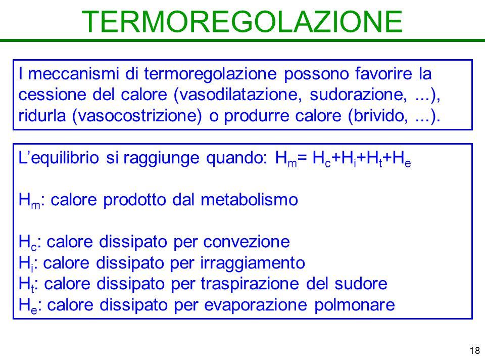 18 TERMOREGOLAZIONE I meccanismi di termoregolazione possono favorire la cessione del calore (vasodilatazione, sudorazione,...), ridurla (vasocostrizione) o produrre calore (brivido,...).