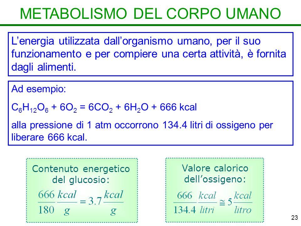 23 METABOLISMO DEL CORPO UMANO Lenergia utilizzata dallorganismo umano, per il suo funzionamento e per compiere una certa attività, è fornita dagli alimenti.