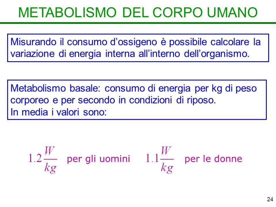 24 METABOLISMO DEL CORPO UMANO Misurando il consumo dossigeno è possibile calcolare la variazione di energia interna allinterno dellorganismo.