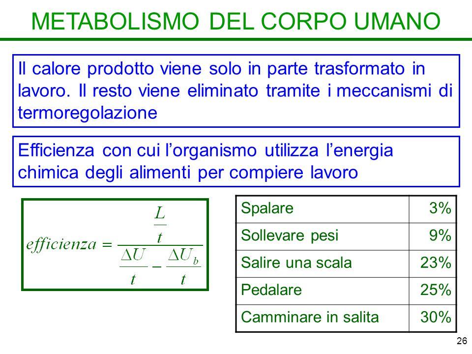 26 METABOLISMO DEL CORPO UMANO Il calore prodotto viene solo in parte trasformato in lavoro.
