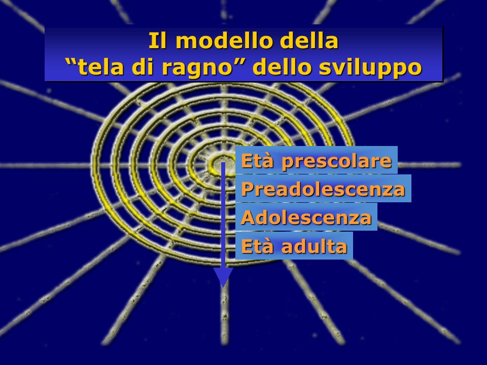Età prescolare Preadolescenza Adolescenza Età adulta Il modello della tela di ragno dello sviluppo