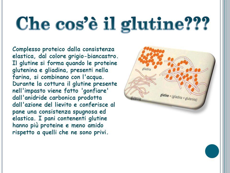 … quando un cliente (antigene) trova gli abiti giusti (anticorpi) il sarto (linfocita B) ordina alla fabbrica di produrre grandi quantità di quel capo di vestiario Teoria della selezione clonale