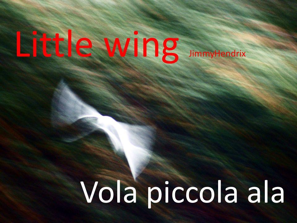 Vola piccola ala Little wing JimmyHendrix