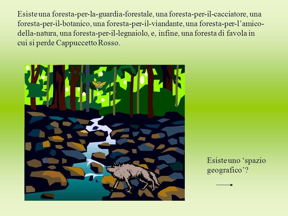 Esiste una foresta-per-la-guardia-forestale, una foresta-per-il-cacciatore, una foresta-per-il-botanico, una foresta-per-il-viandante, una foresta-per