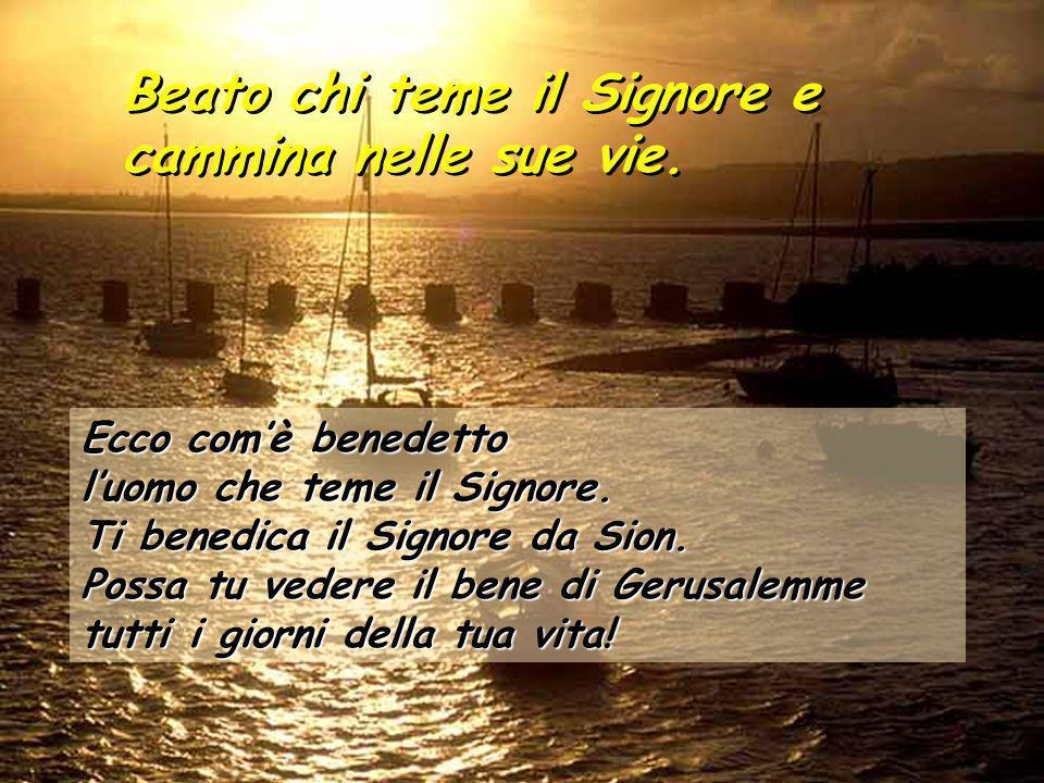 Seconda Lettura :Lettera S.Paolo Ap.