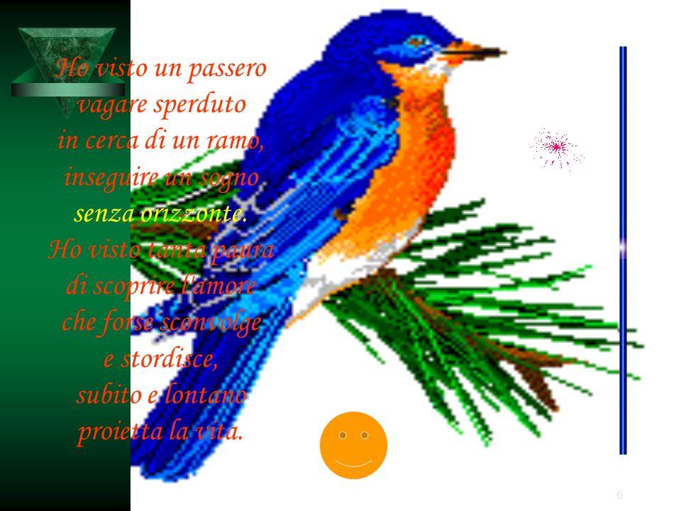6 Ho visto un passero vagare sperduto in cerca di un ramo, inseguire un sogno senza orizzonte. Ho visto tanta paura di scoprire l'amore che forse scon