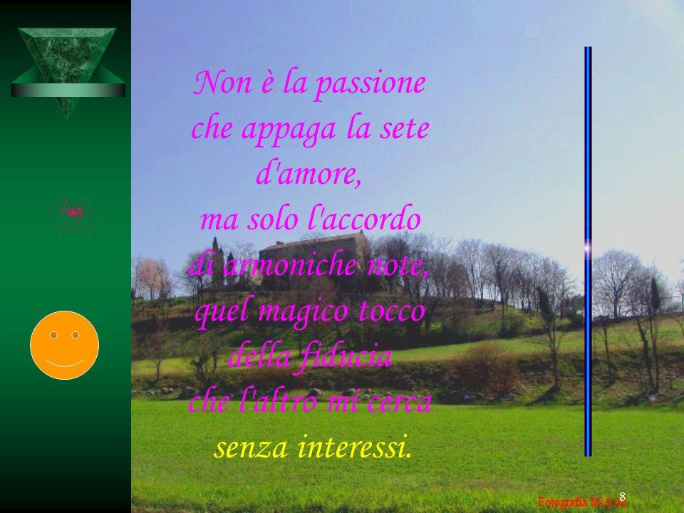 8 Non è la passione che appaga la sete d'amore, ma solo l'accordo di armoniche note, quel magico tocco della fiducia che l'altro mi cerca senza intere