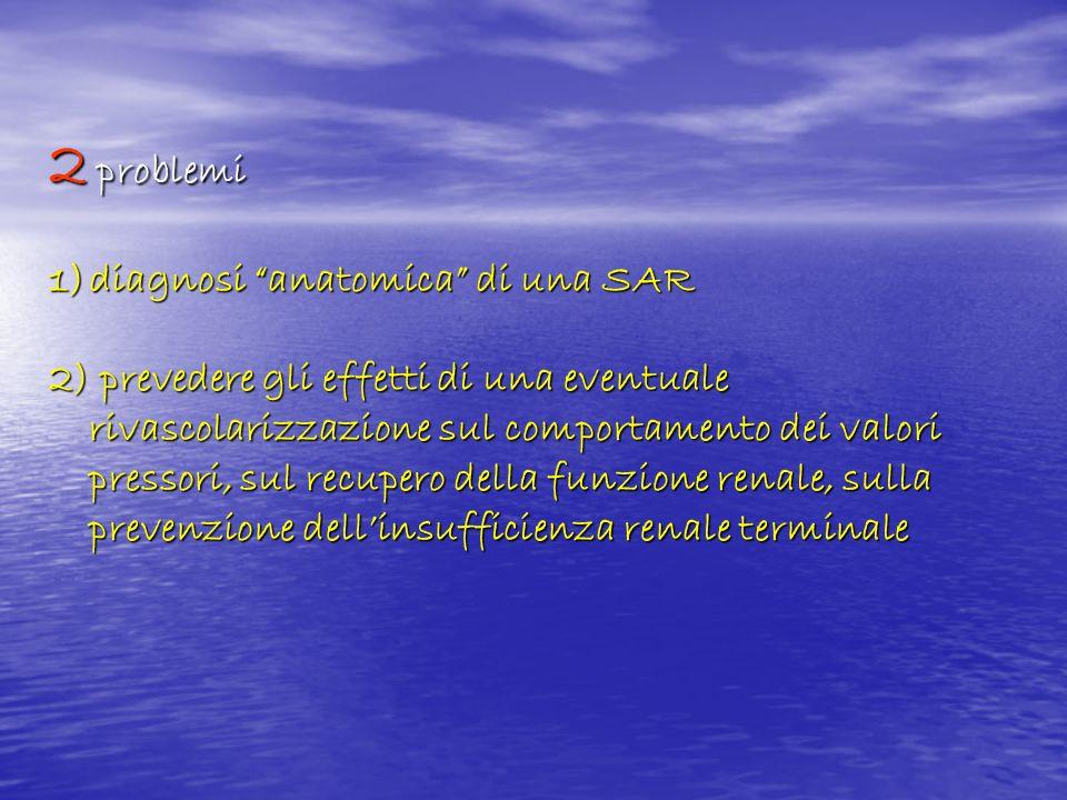 2 problemi 1)diagnosi anatomica di una SAR 2) prevedere gli effetti di una eventuale rivascolarizzazione sul comportamento dei valori pressori, sul re