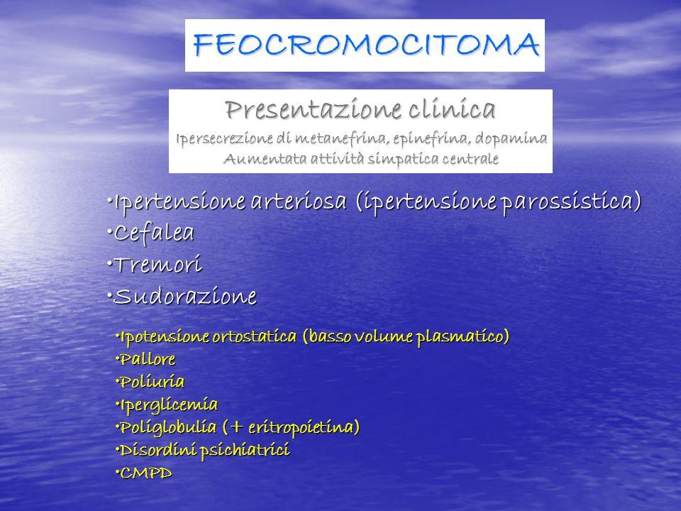 FEOCROMOCITOMA Presentazione clinica Ipersecrezione di metanefrina, epinefrina, dopamina Aumentata attività simpatica centrale Ipertensione arteriosa