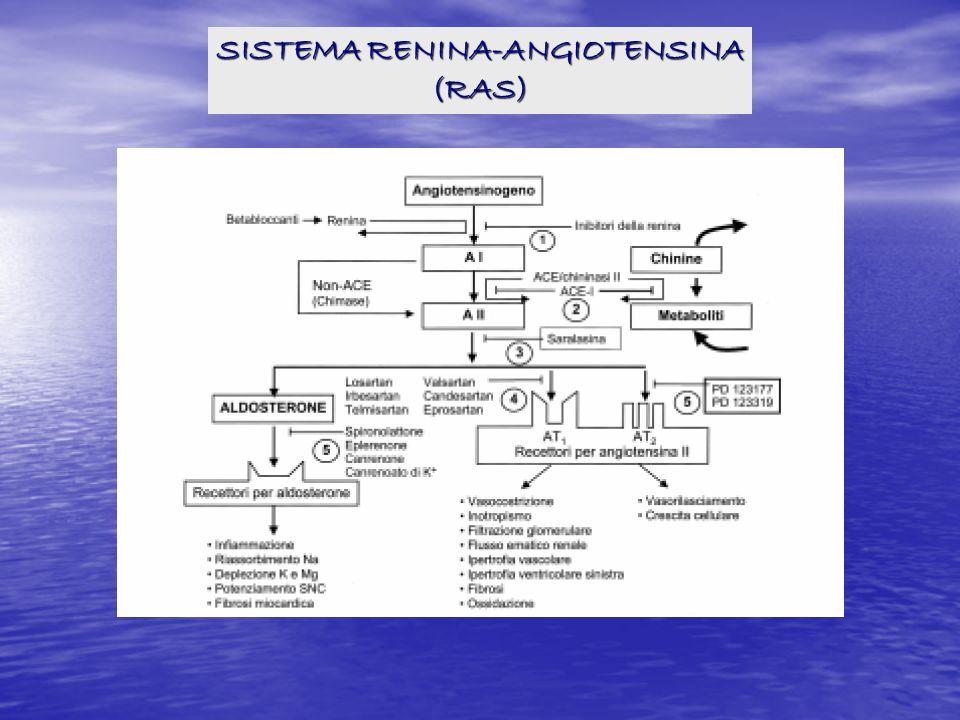 SISTEMA RENINA-ANGIOTENSINA (RAS)