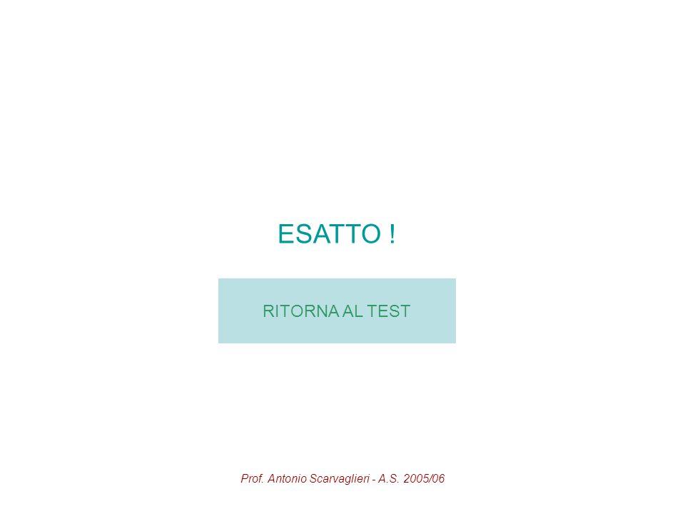Prof. Antonio Scarvaglieri - A.S. 2005/06 ESATTO ! RITORNA AL TEST