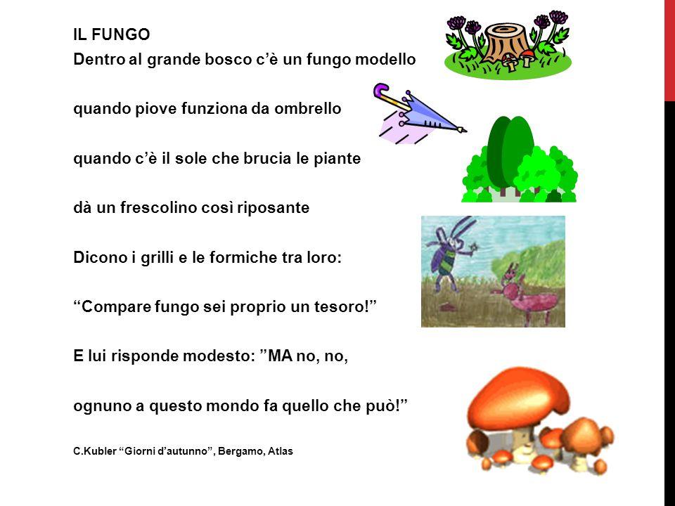 IL FUNGO Dentro al grande bosco cè un fungo modello quando piove funziona da ombrello quando cè il sole che brucia le piante dà un frescolino così rip