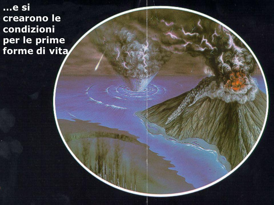 …e si crearono le condizioni per le prime forme di vita