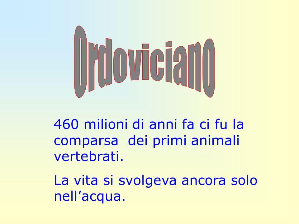 460 milioni di anni fa ci fu la comparsa dei primi animali vertebrati. La vita si svolgeva ancora solo nellacqua.