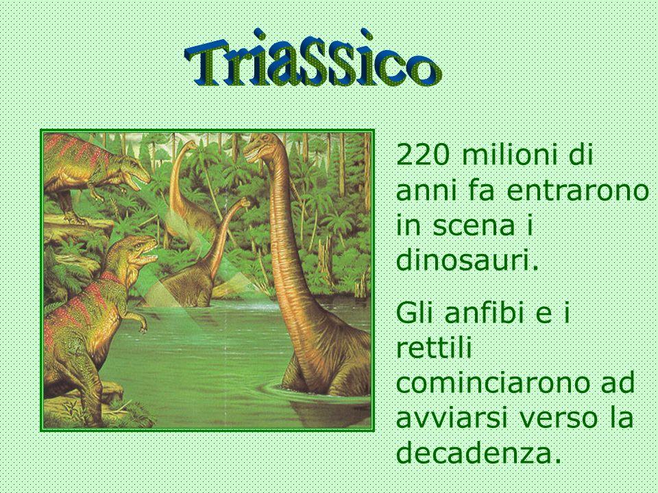 220 milioni di anni fa entrarono in scena i dinosauri. Gli anfibi e i rettili cominciarono ad avviarsi verso la decadenza.