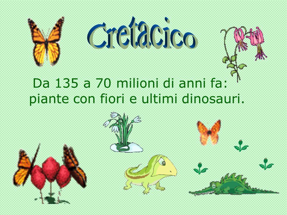 Da 135 a 70 milioni di anni fa: piante con fiori e ultimi dinosauri.