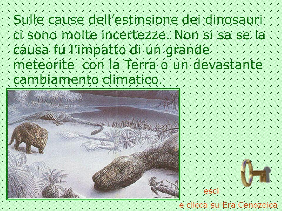 Sulle cause dellestinsione dei dinosauri ci sono molte incertezze. Non si sa se la causa fu limpatto di un grande meteorite con la Terra o un devastan