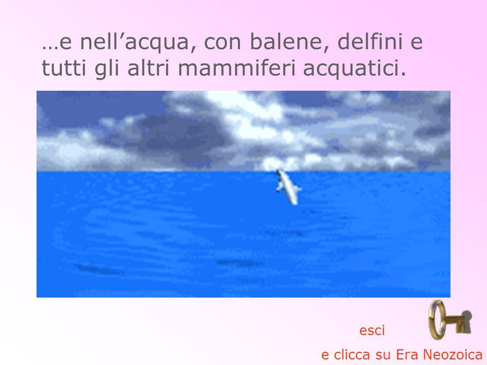 …e nellacqua, con balene, delfini e tutti gli altri mammiferi acquatici. esci e clicca su Era Neozoica