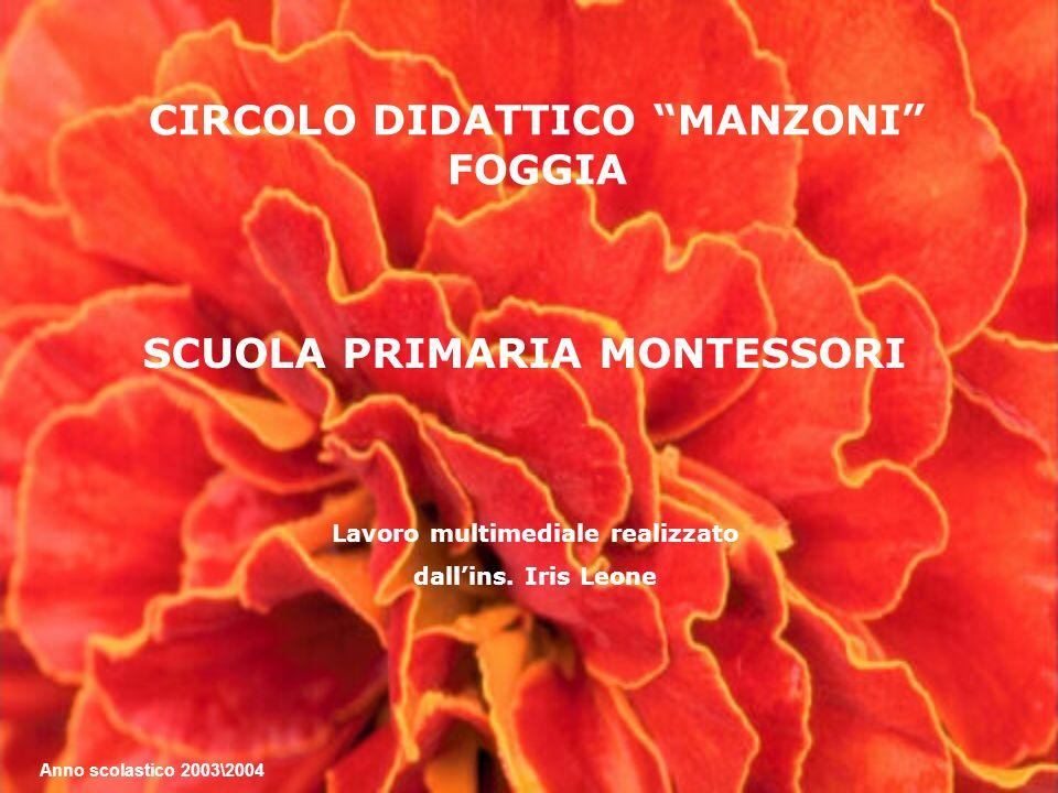 Lavoro multimediale realizzato dallins. Iris Leone CIRCOLO DIDATTICO MANZONI FOGGIA SCUOLA PRIMARIA MONTESSORI Anno scolastico 2003\2004