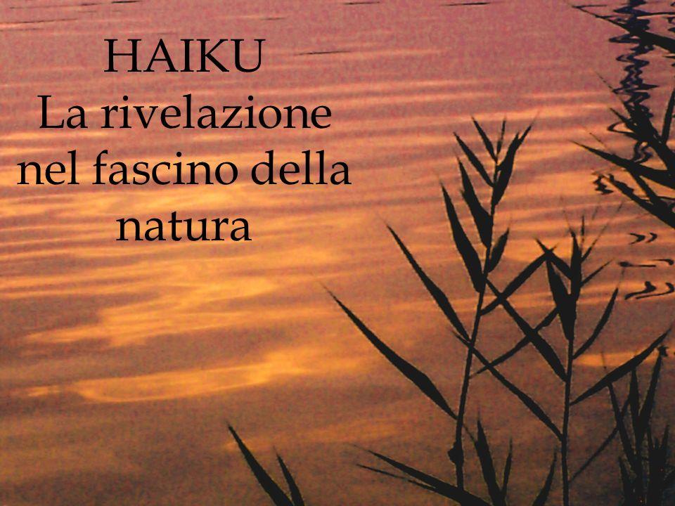 HAIKU La rivelazione nel fascino della natura
