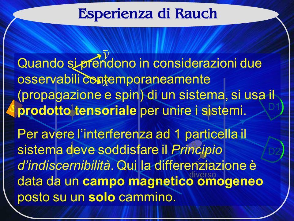Esperienza di Rauch D1 D2 B Spin diverso S.