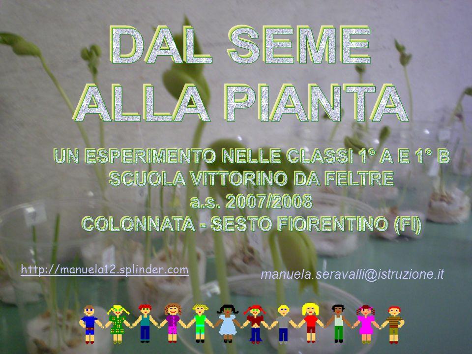 http://manuela12.splinder.com manuela.seravalli@istruzione.it