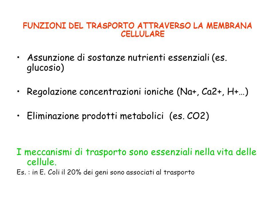 FUNZIONI DEL TRASPORTO ATTRAVERSO LA MEMBRANA CELLULARE Assunzione di sostanze nutrienti essenziali (es. glucosio) Regolazione concentrazioni ioniche