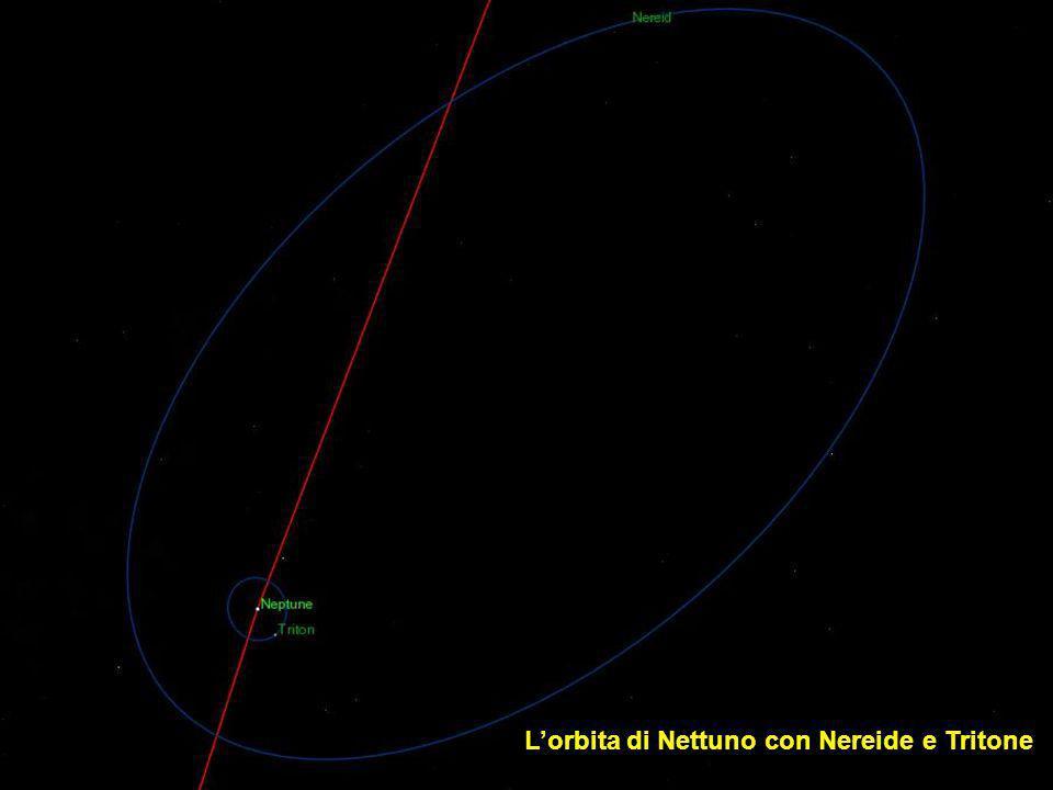 Lorbita di Nettuno e i suoi satelliti (senza Nereide)