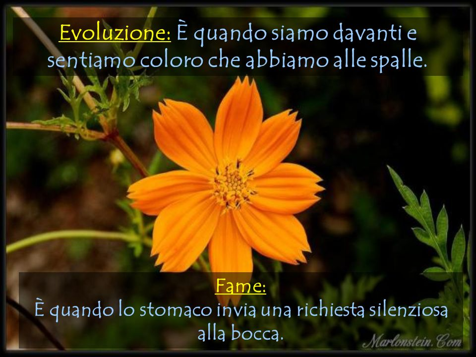 Evoluzione: È quando siamo davanti e sentiamo coloro che abbiamo alle spalle.