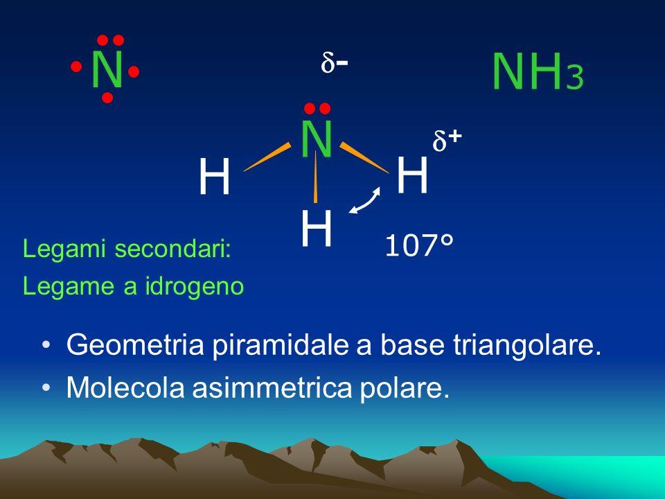 N H H 107° H Geometria piramidale a base triangolare. Molecola asimmetrica polare. N - + NH 3 Legami secondari: Legame a idrogeno