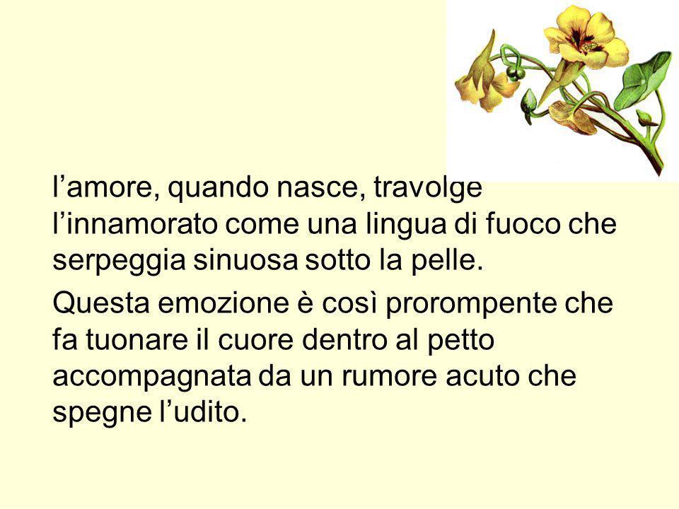 Amore = desiderio E tutta molle dun sudor di gelo, e smorta in viso come erba che langue, tremo e fremo di brividi, ed anelo tacito, esangue.
