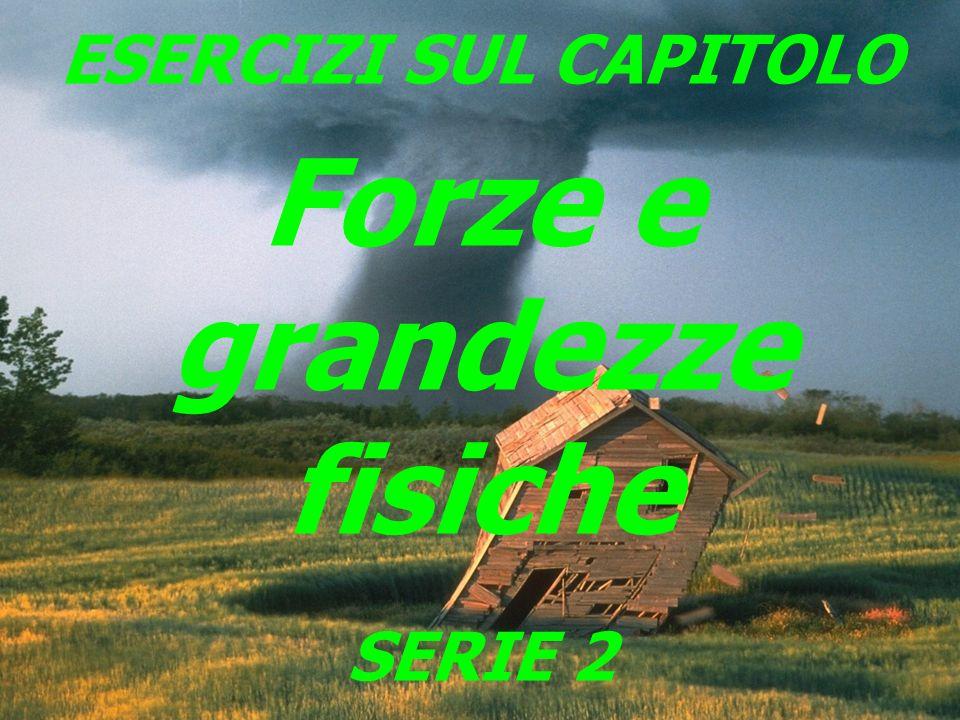 1 ESERCIZI SUL CAPITOLO Forze e grandezze fisiche SERIE 2