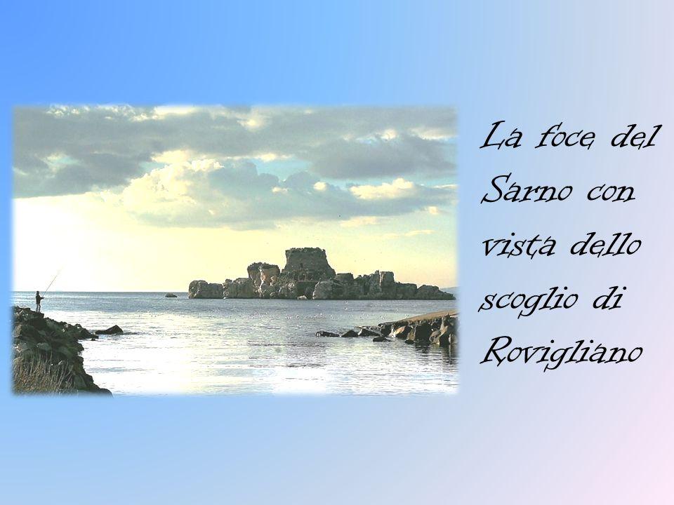 IL Fiume Il bacino del Sarno ha un estensione complessiva di 438 km², interessanti 39 comuni tra le province di Salerno, Napoli ed Avellino. Il Sarno