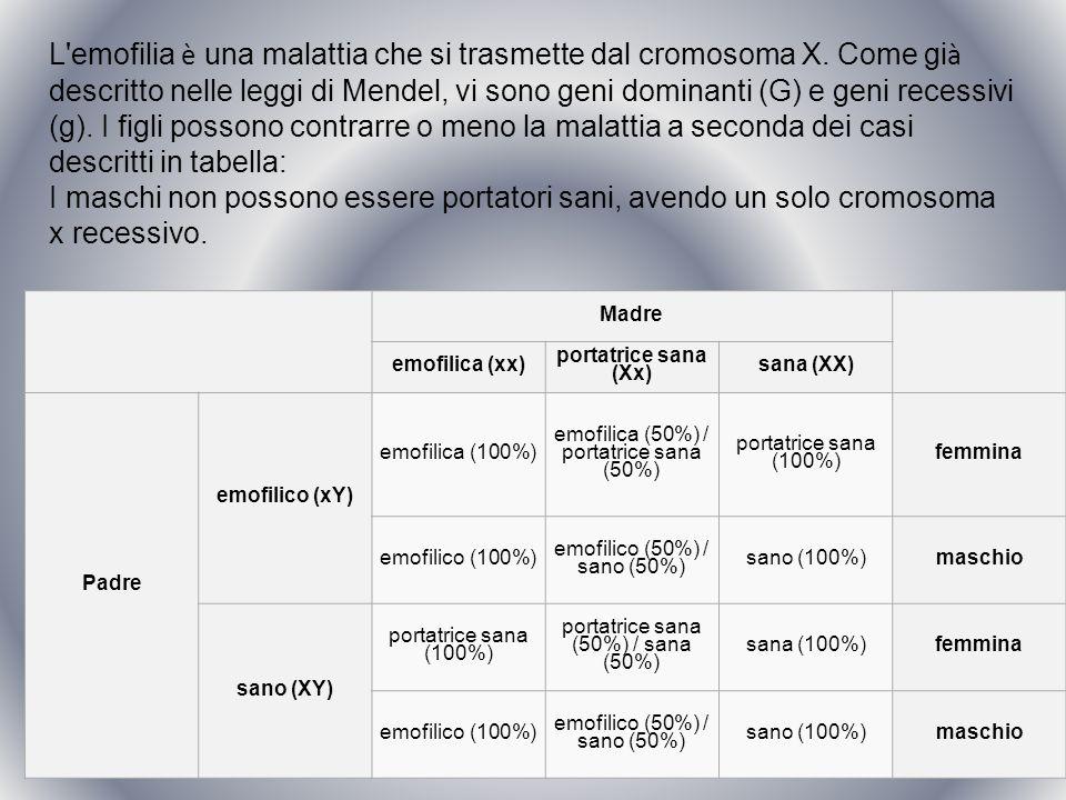 Madre emofilica (xx) portatrice sana (Xx) sana (XX) Padre emofilico (xY) emofilica (100%) emofilica (50%) / portatrice sana (50%) portatrice sana (100