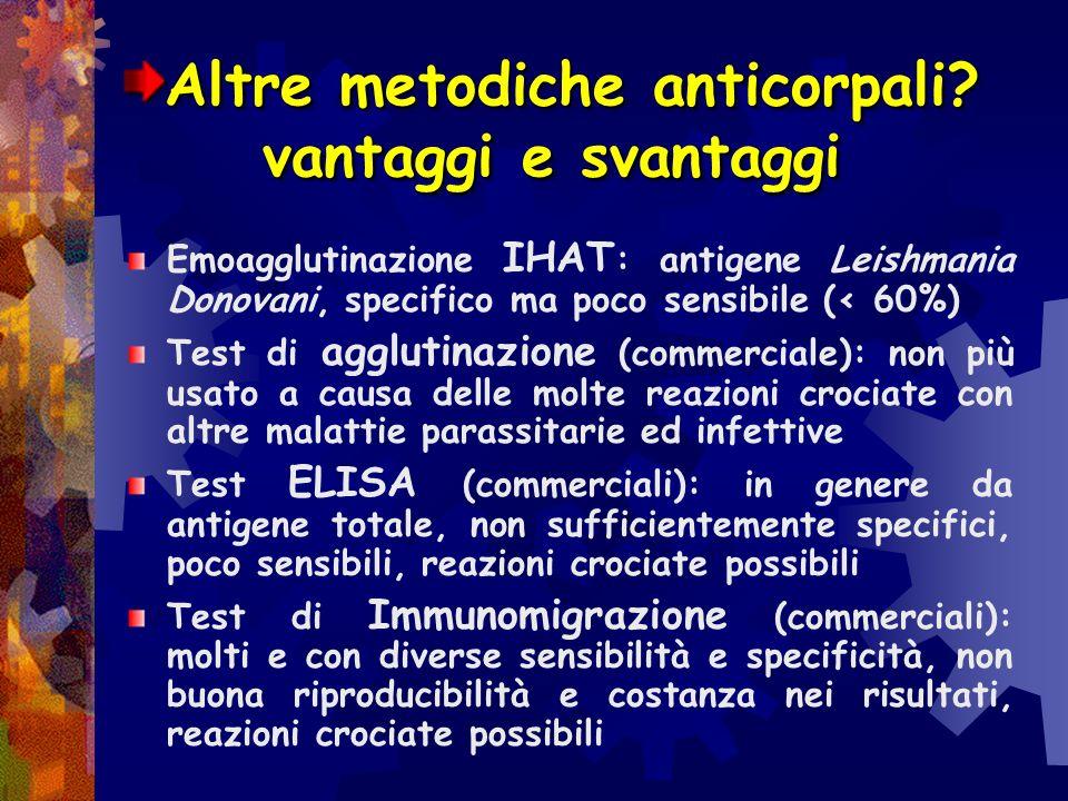 2) Il titolo anticorpale: IFI La sierologia consente di determinare anticorpi specifici nei confronti del parassita La metodica in immunofluorescenza