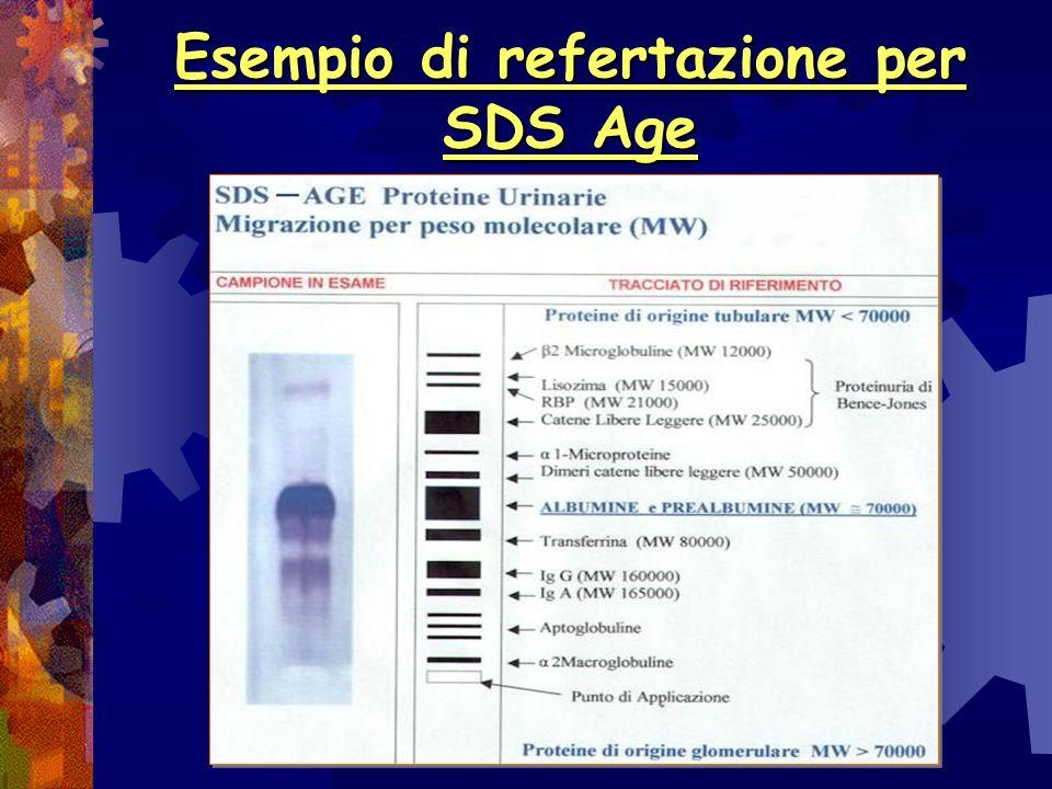 SDS Age Proteinurie Ogni SDS viene eseguito inserendo un pool proteine di riferimento a composizione e peso molecolare noto in posizione 3 1 banda a P