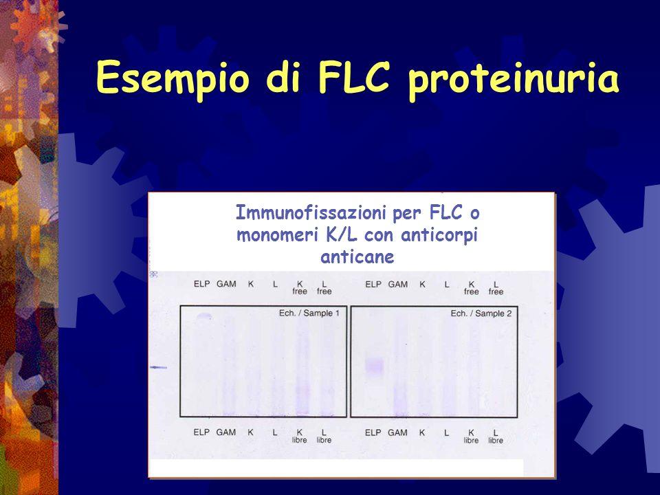 Semplice Tubulare: presenza di proteine tubulari con P.M. fra 70 e 12 kDa Danno renale presente o malattia neoplastica (mieloma multiplo) o infiammato