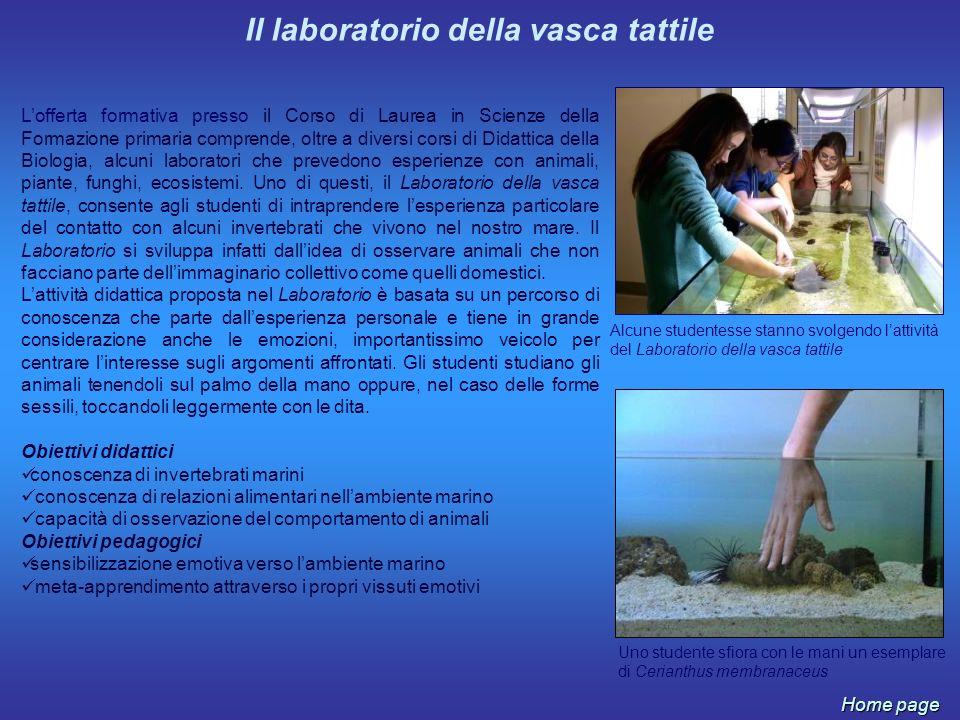 Lofferta formativa presso il Corso di Laurea in Scienze della Formazione primaria comprende, oltre a diversi corsi di Didattica della Biologia, alcuni