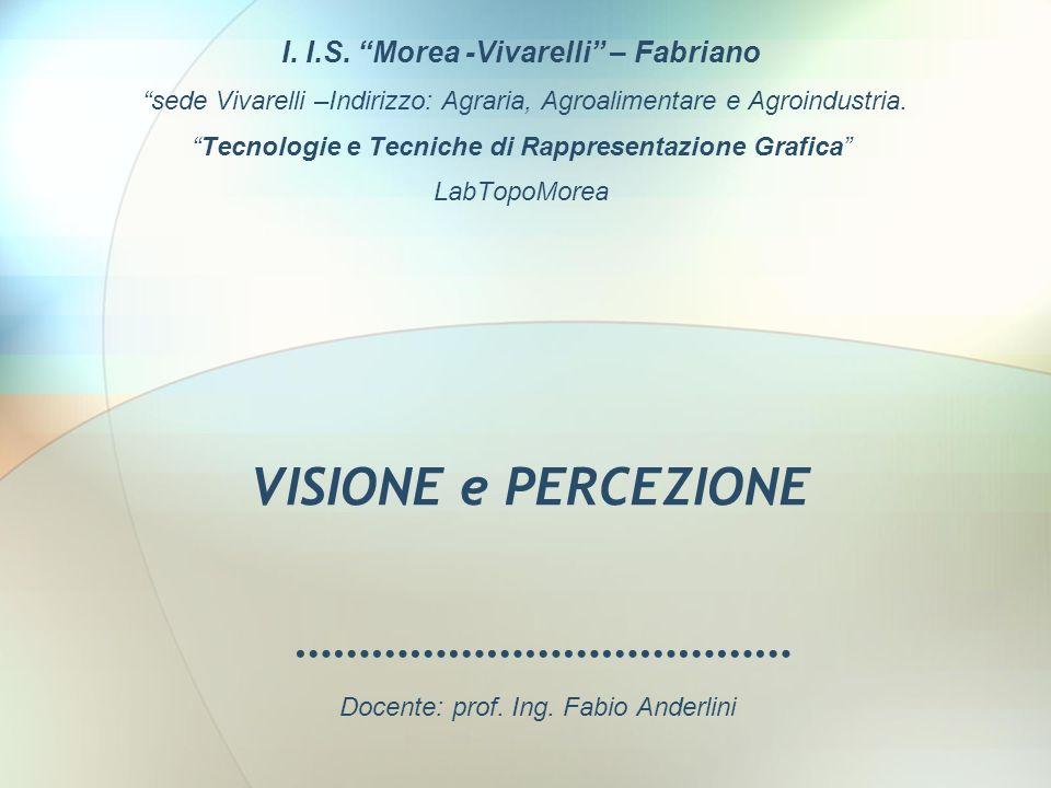 ………………………………… I. I.S. Morea -Vivarelli – Fabriano sede Vivarelli –Indirizzo: Agraria, Agroalimentare e Agroindustria. Tecnologie e Tecniche di Rappres