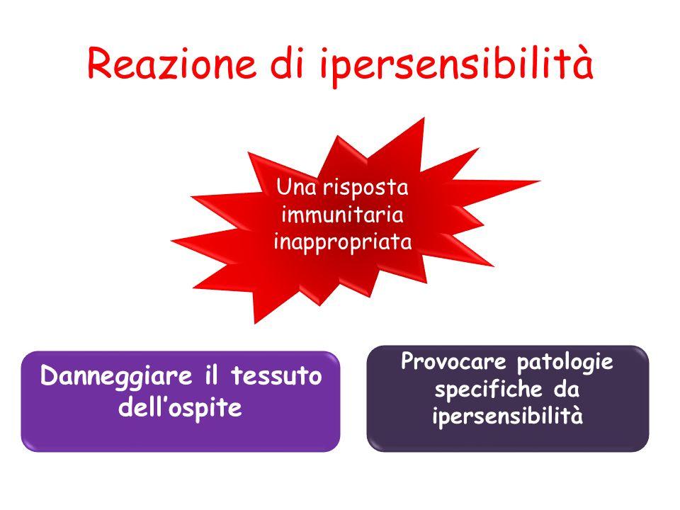 Reazione di ipersensibilità Una risposta immunitaria inappropriata Danneggiare il tessuto dellospite Provocare patologie specifiche da ipersensibilità