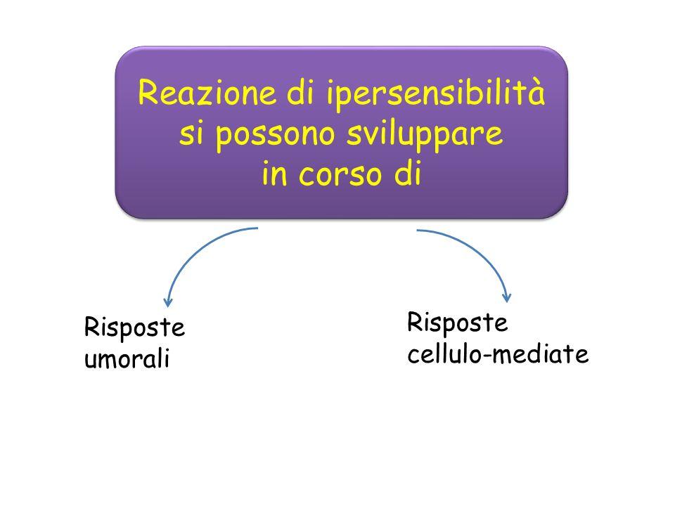 Risposte umorali Risposte cellulo-mediate Reazione di ipersensibilità si possono sviluppare in corso di Reazione di ipersensibilità si possono sviluppare in corso di