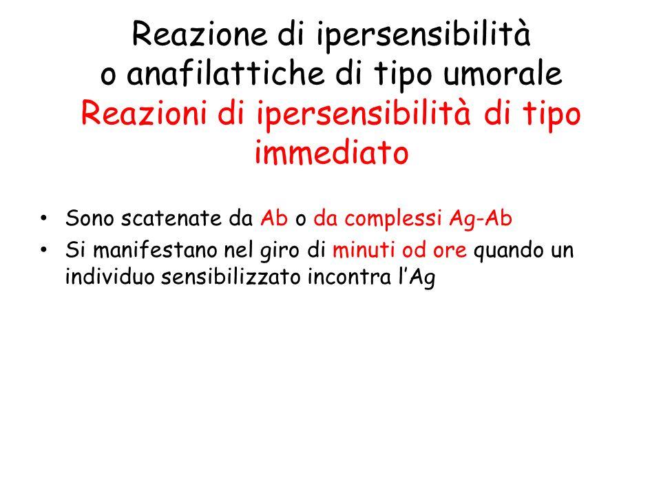 Il ritardo (= qualche giorno) è dovuto al tempo necessario per la presentazione dellantigene (Reazione alla tubercolina) T H 1 da una precedente immunizzazione (memoria)