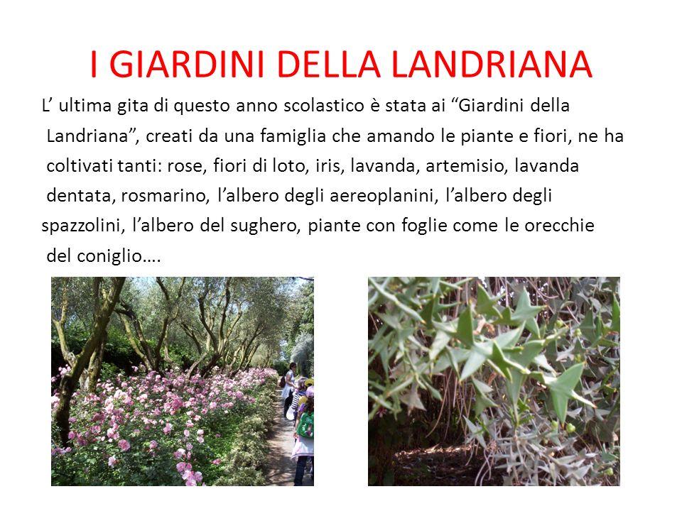 I GIARDINI DELLA LANDRIANA L ultima gita di questo anno scolastico è stata ai Giardini della Landriana, creati da una famiglia che amando le piante e