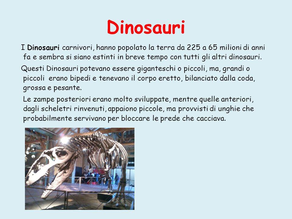 I dinosauri più grandi furono gli erbivori, il più noto dei quali fu l Apatosaurus, le cui gambe erano solide come tronchi d albero e più conosciuto comeBrontosauro (dal greco bronte, tuono ; sauros, lucertola ),ossia lucertola dal tuono per il rumore che provocava portandosi in giro le sue 50 tonnellate di peso.