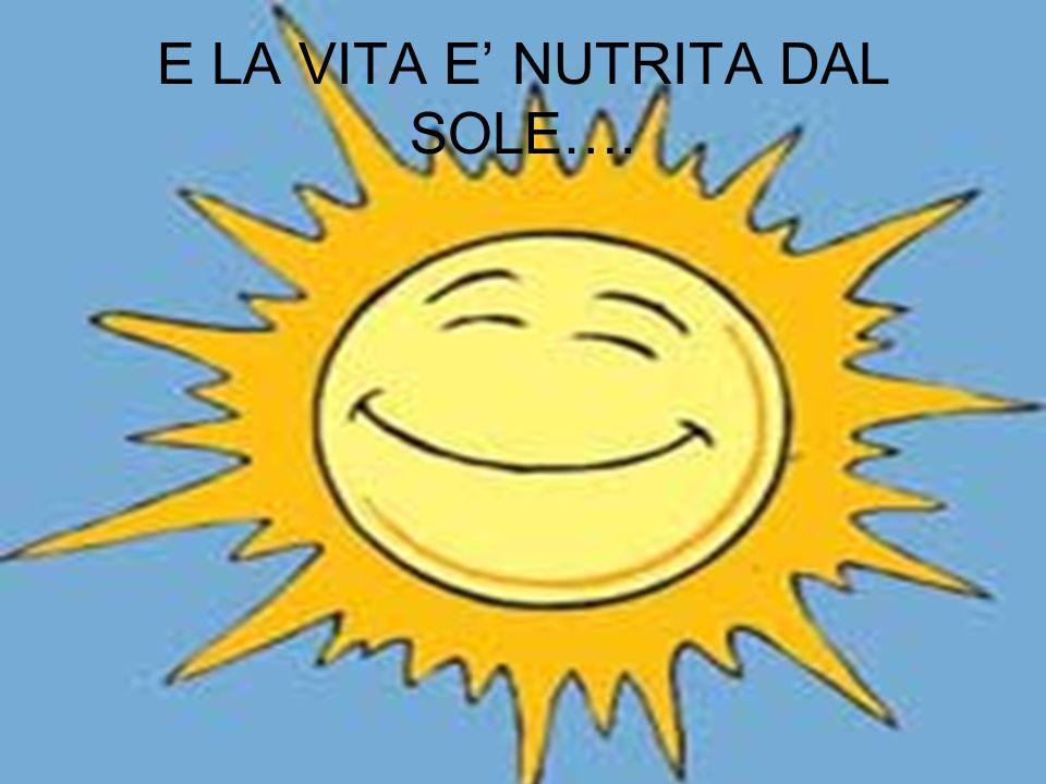 E LA VITA E NUTRITA DAL SOLE….
