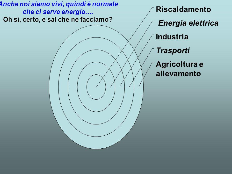 Riscaldamento Energia elettrica Industria Trasporti Agricoltura e allevamento Anche noi siamo vivi, quindi è normale che ci serva energia….